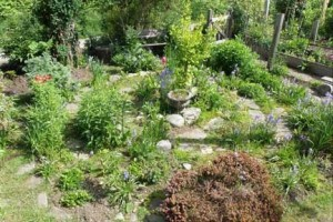 garden - labyrinth1 2014